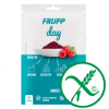 frupp_day_ico_small